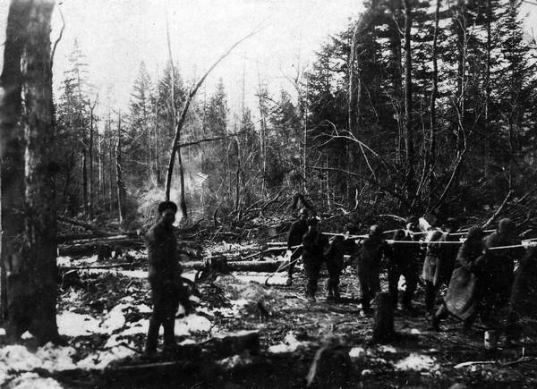 В сибирских лагерях гулаг проводились опыты по осеменению 70
